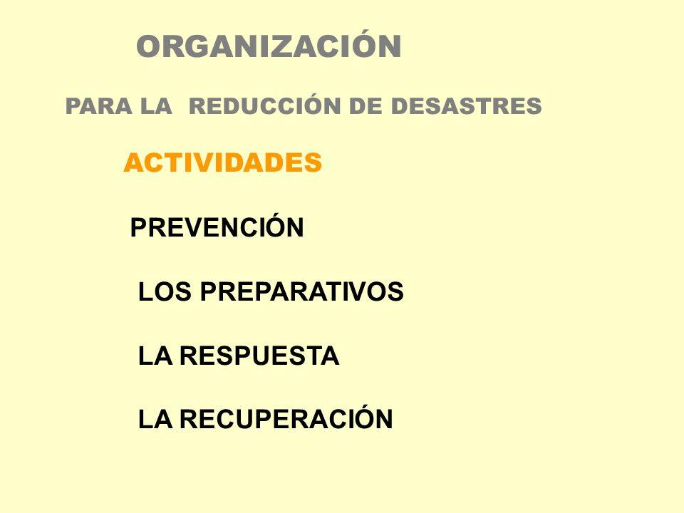 ORGANIZACIÓN PARA LA REDUCCIÓN DE DESASTRES ACTIVIDADES PREVENCIÓN LOS PREPARATIVOS LA RESPUESTA LA RECUPERACIÓN