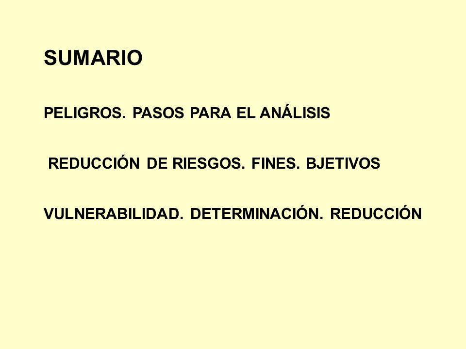 SUMARIO PELIGROS. PASOS PARA EL ANÁLISIS REDUCCIÓN DE RIESGOS. FINES. BJETIVOS VULNERABILIDAD. DETERMINACIÓN. REDUCCIÓN