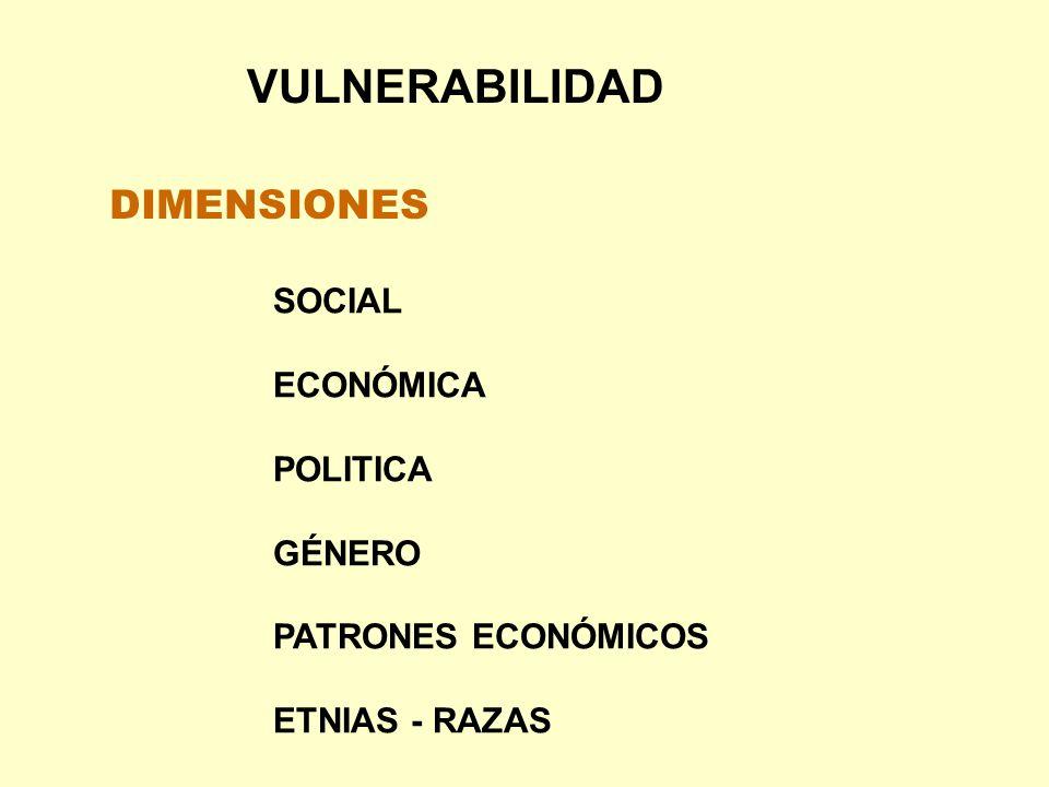 DIMENSIONES VULNERABILIDAD SOCIAL ECONÓMICA POLITICA GÉNERO PATRONES ECONÓMICOS ETNIAS - RAZAS