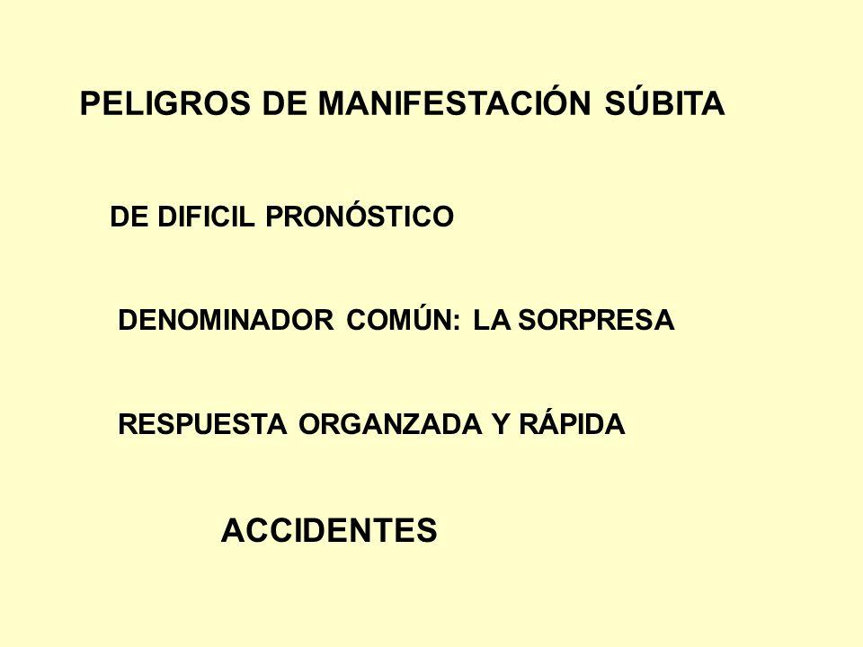PELIGROS DE MANIFESTACIÓN SÚBITA DE DIFICIL PRONÓSTICO DENOMINADOR COMÚN: LA SORPRESA RESPUESTA ORGANZADA Y RÁPIDA ACCIDENTES