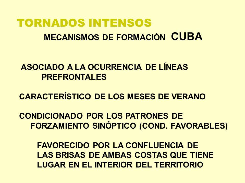 TORNADOS INTENSOS MECANISMOS DE FORMACIÓN CUBA ASOCIADO A LA OCURRENCIA DE LÍNEAS PREFRONTALES CARACTERÍSTICO DE LOS MESES DE VERANO CONDICIONADO POR