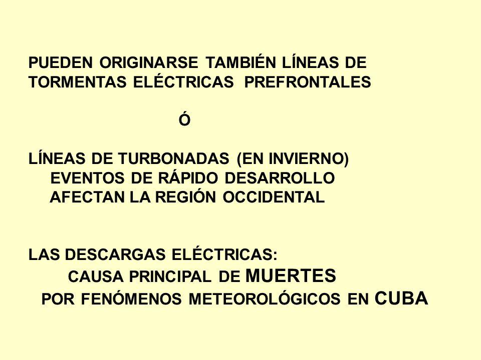 PUEDEN ORIGINARSE TAMBIÉN LÍNEAS DE TORMENTAS ELÉCTRICAS PREFRONTALES Ó LÍNEAS DE TURBONADAS (EN INVIERNO) EVENTOS DE RÁPIDO DESARROLLO AFECTAN LA REG