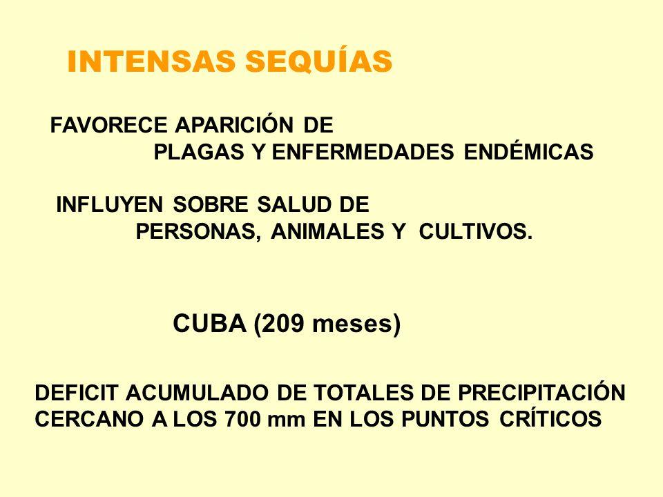 INTENSAS SEQUÍAS CUBA (209 meses) DEFICIT ACUMULADO DE TOTALES DE PRECIPITACIÓN CERCANO A LOS 700 mm EN LOS PUNTOS CRÍTICOS FAVORECE APARICIÓN DE PLAG