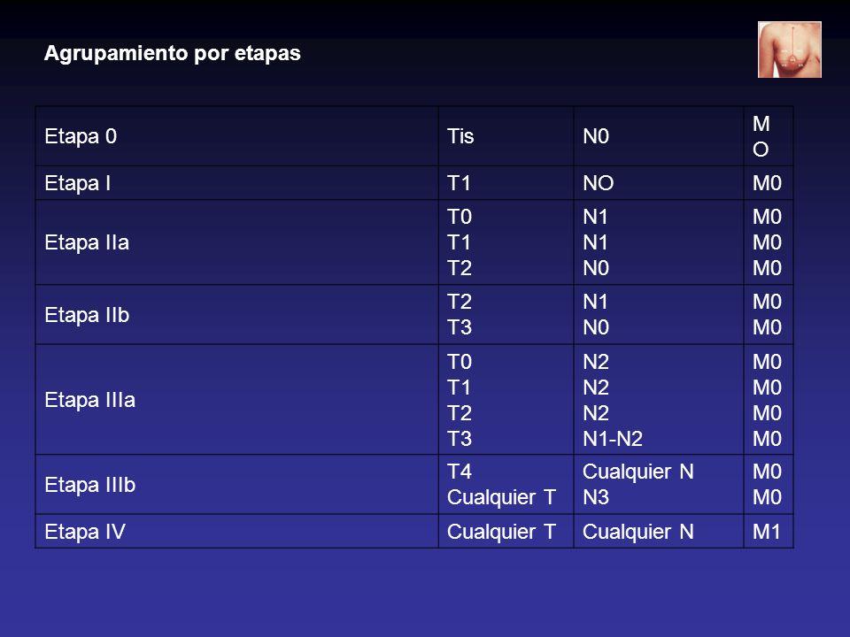 Agrupamiento por etapas Etapa 0TisN0 MOMO Etapa IT1NOM0 Etapa IIa T0 T1 T2 N1 N1 N0 M0 M0 M0 Etapa IIb T2 T3 N1 N0M0 Etapa IIIa T0 T1 T2 T3 N2 N2 N2 N
