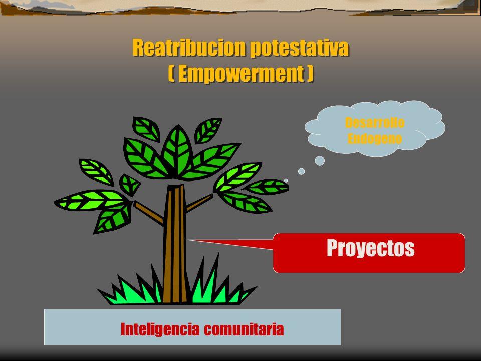 Reatribucion potestativa ( Empowerment ) Inteligencia comunitaria Proyectos Desarrollo Endogeno