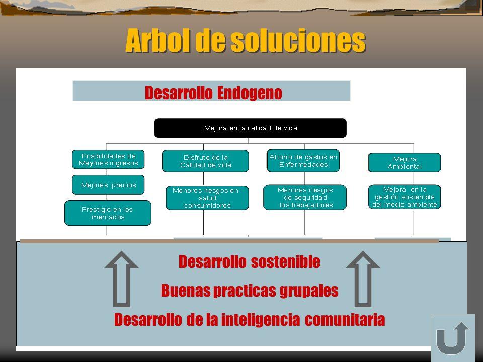 Arbol de soluciones Desarrollo sostenible Buenas practicas grupales Desarrollo de la inteligencia comunitaria Desarrollo Endogeno