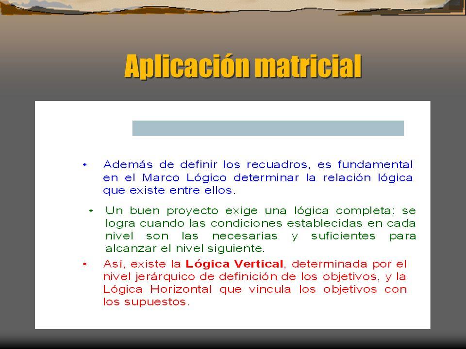 Aplicación matricial