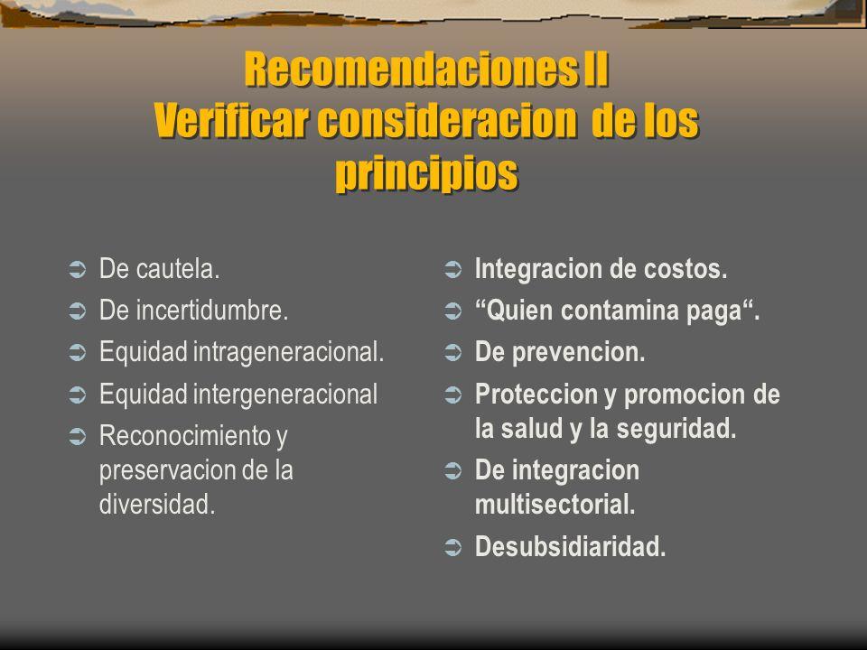Recomendaciones II Verificar consideracion de los principios De cautela. De incertidumbre. Equidad intrageneracional. Equidad intergeneracional Recono