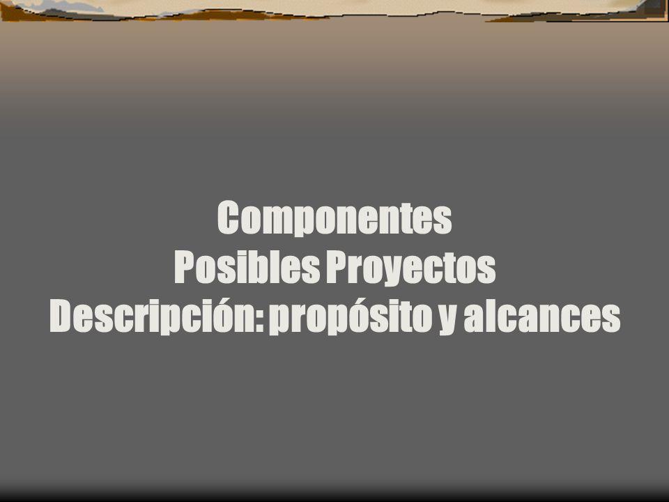 Componentes Posibles Proyectos Descripción: propósito y alcances