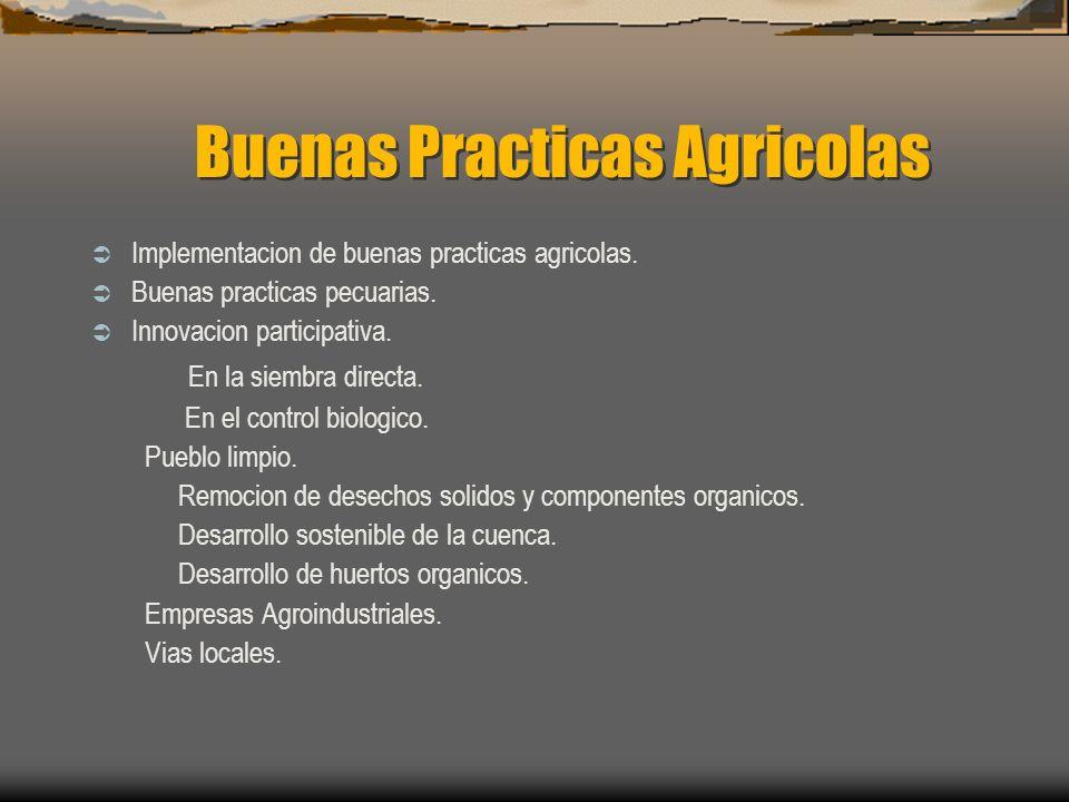 Buenas Practicas Agricolas Implementacion de buenas practicas agricolas. Buenas practicas pecuarias. Innovacion participativa. En la siembra directa.