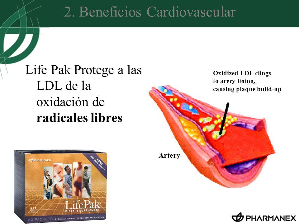 2. Beneficios Cardiovascular Life Pak Protege a las LDL de la oxidación de radicales libres Oxidized LDL clings to arery lining, causing plaque build-