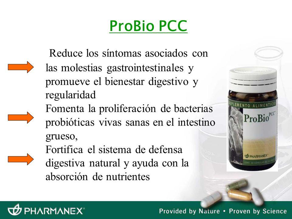 ProBio PCC Reduce los síntomas asociados con las molestias gastrointestinales y promueve el bienestar digestivo y regularidad Fomenta la proliferación