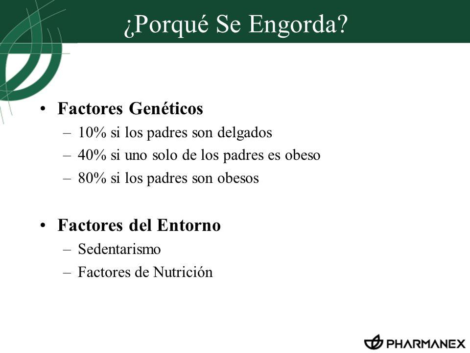 ¿Porqué Se Engorda? Factores Genéticos –10% si los padres son delgados –40% si uno solo de los padres es obeso –80% si los padres son obesos Factores