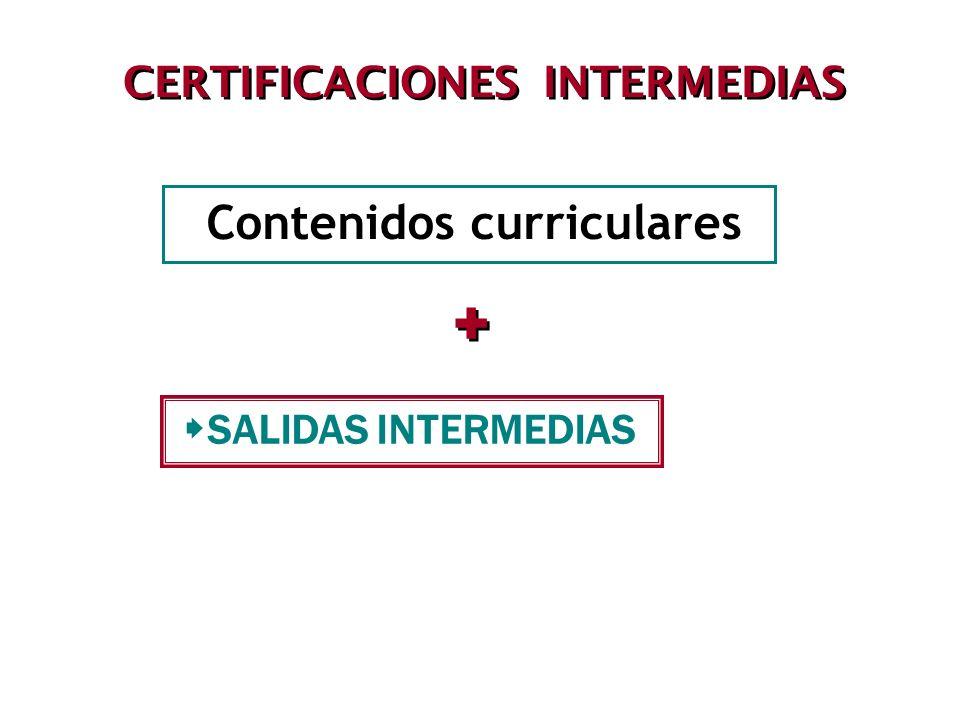 CERTIFICACIONES INTERMEDIAS Contenidos curriculares + + SALIDAS INTERMEDIAS