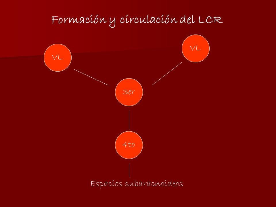 VL 3er 4to Espacios subaracnoideos Formación y circulación del LCR