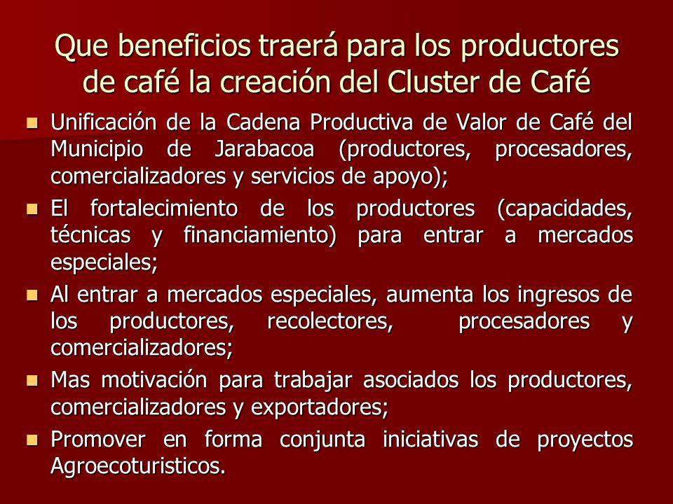 Que beneficios traerá para los productores de café la creación del Cluster de Café Unificación de la Cadena Productiva de Valor de Café del Municipio