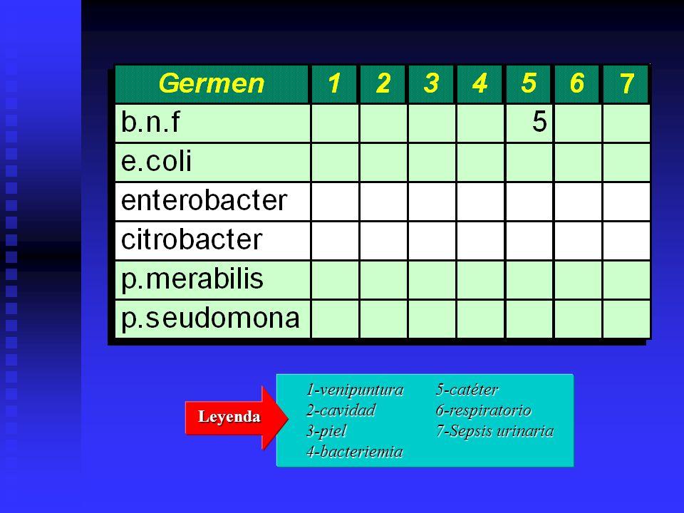 1-venipuntura2-cavidad3-piel4-bacteriemia 5-catéter6-respiratorio 7-Sepsis urinaria Leyenda