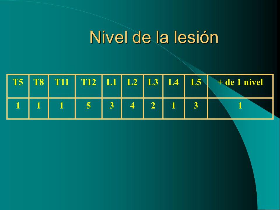 Nivel de la lesión T5T8T11T12L1L2L3L4L5+ de 1 nivel 1115342131