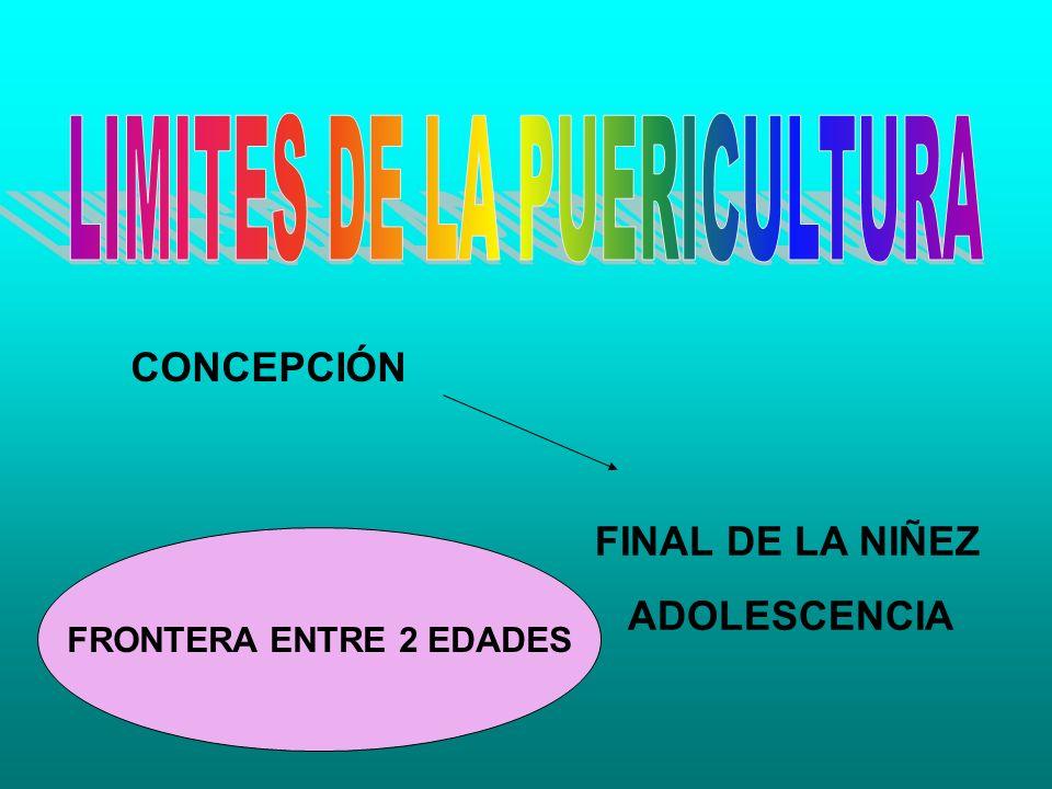 CONCEPCIÓN FINAL DE LA NIÑEZ ADOLESCENCIA FRONTERA ENTRE 2 EDADES