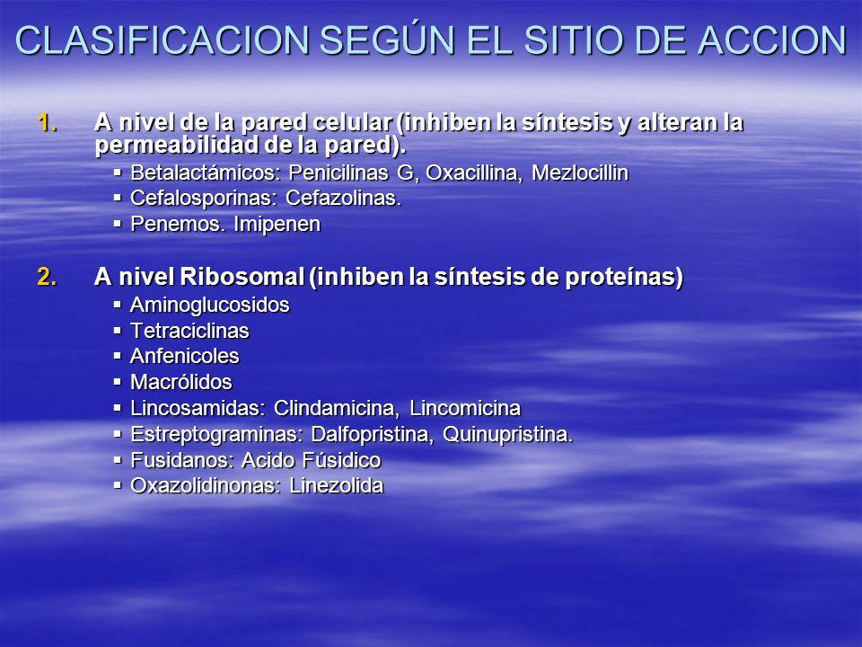 CLASIFICACION SEGÚN EL SITIO DE ACCION 1.A nivel de la pared celular (inhiben la síntesis y alteran la permeabilidad de la pared). Betalactámicos: Pen