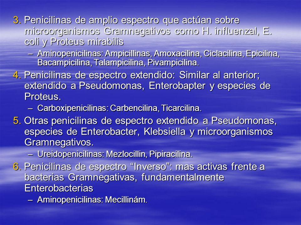 3. Penicilinas de amplio espectro que actúan sobre microorganismos Gramnegativos como H. influenzal, E. coli y Proteus mirabilis –Aminopenicilinas: Am