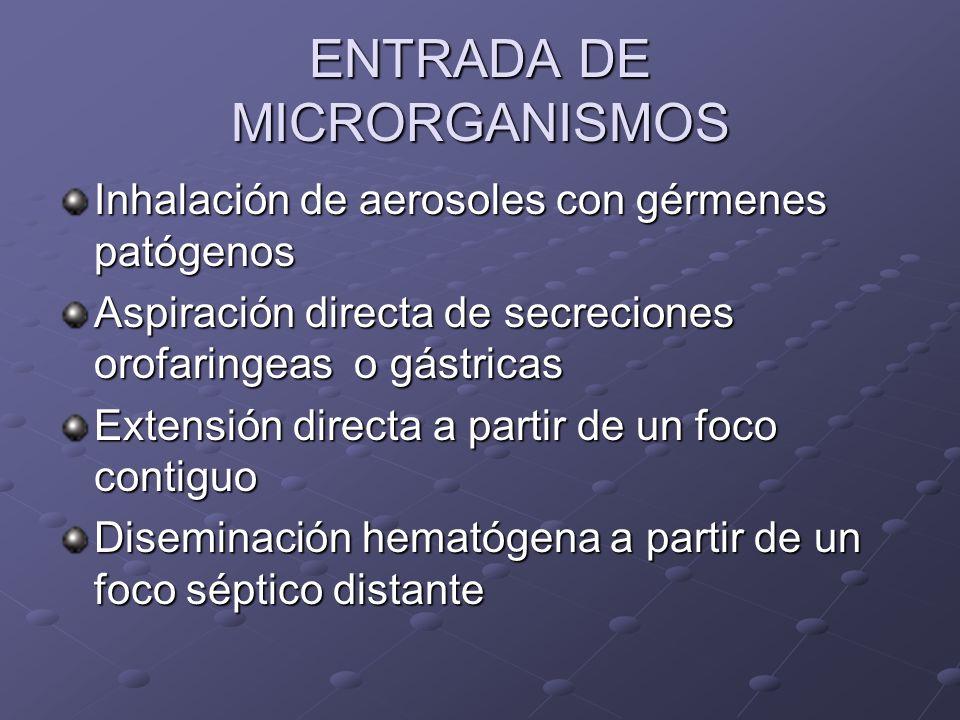 ENTRADA DE MICRORGANISMOS Inhalación de aerosoles con gérmenes patógenos Aspiración directa de secreciones orofaringeas o gástricas Extensión directa