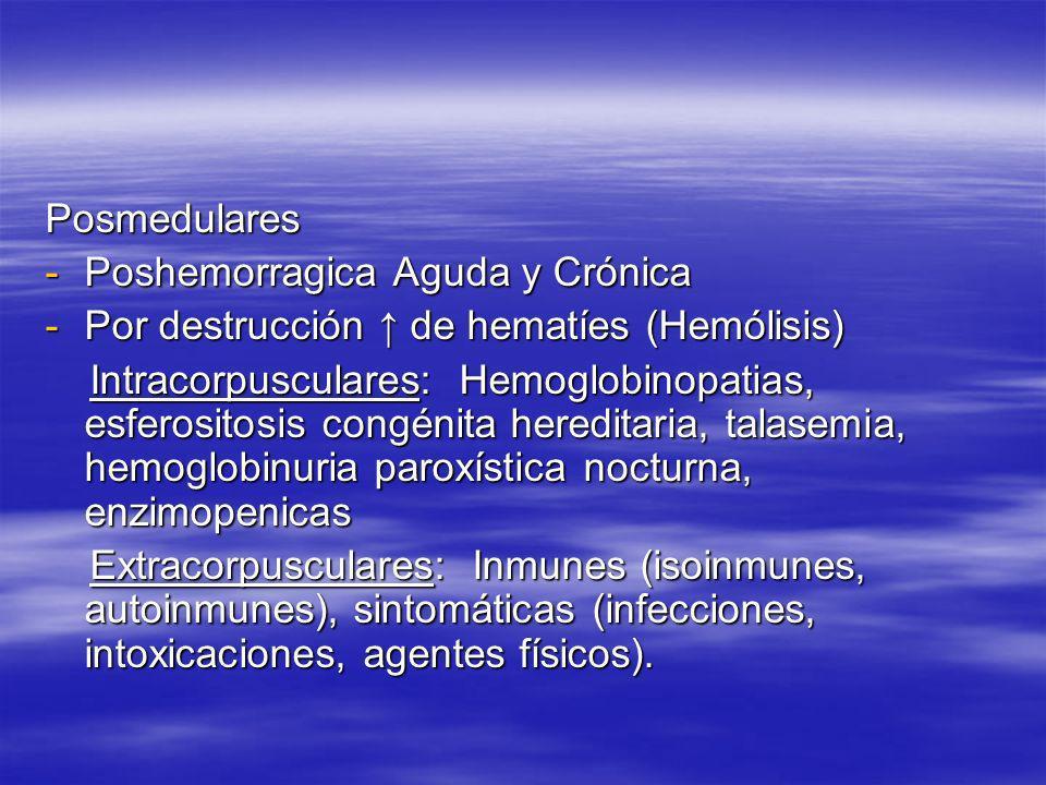 Posmedulares -Poshemorragica Aguda y Crónica -Por destrucción de hematíes (Hemólisis) Intracorpusculares: Hemoglobinopatias, esferositosis congénita h