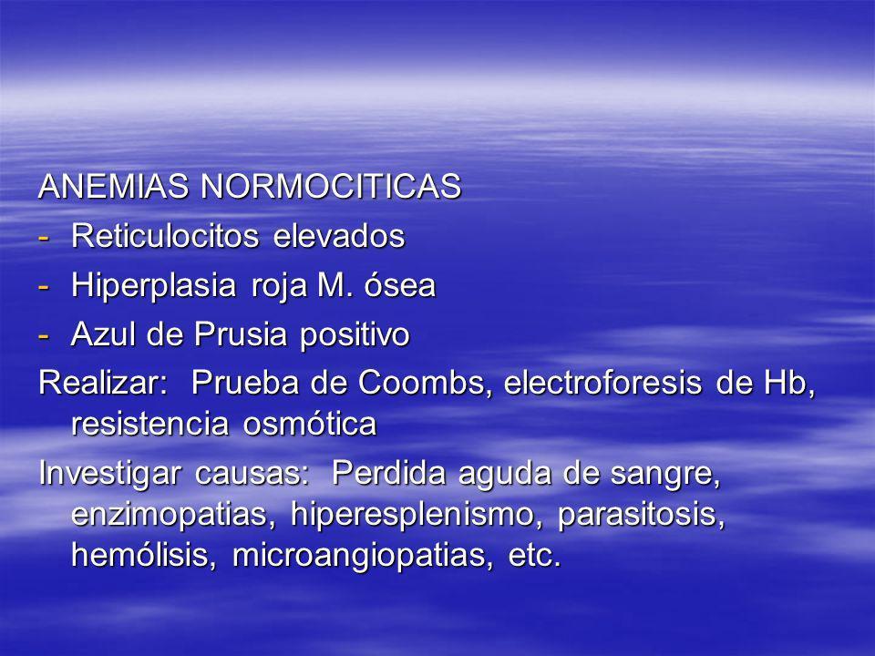 ANEMIAS NORMOCITICAS -Reticulocitos elevados -Hiperplasia roja M. ósea -Azul de Prusia positivo Realizar: Prueba de Coombs, electroforesis de Hb, resi