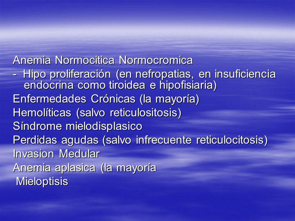 Anemia Normocitica Normocromica - Hipo proliferación (en nefropatias, en insuficiencia endocrina como tiroidea e hipofisiaria) Enfermedades Crónicas (