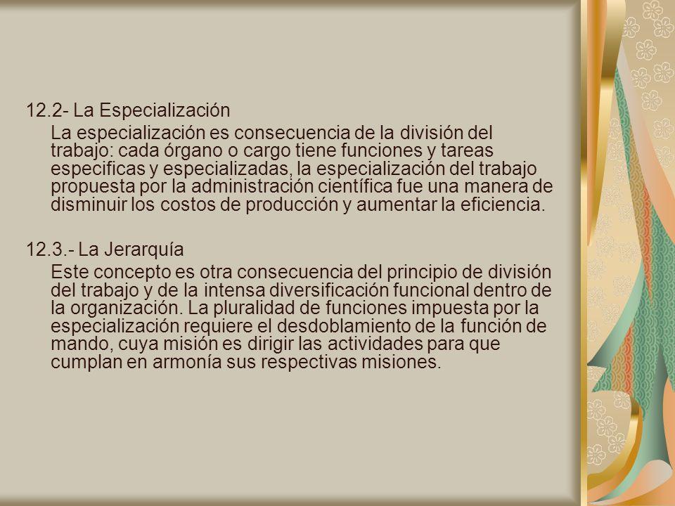 12.2- La Especialización La especialización es consecuencia de la división del trabajo: cada órgano o cargo tiene funciones y tareas especificas y esp