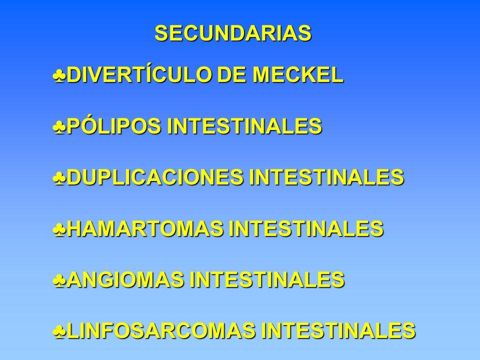 SECUNDARIAS DIVERTÍCULO DE MECKELDIVERTÍCULO DE MECKEL PÓLIPOS INTESTINALESPÓLIPOS INTESTINALES DUPLICACIONES INTESTINALESDUPLICACIONES INTESTINALES H