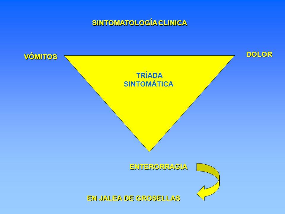 TRÍADA SINTOMÁTICA ENTERORRAGIA DOLOR VÓMITOS EN JALEA DE GROSELLAS SINTOMATOLOGÍA CLINICA