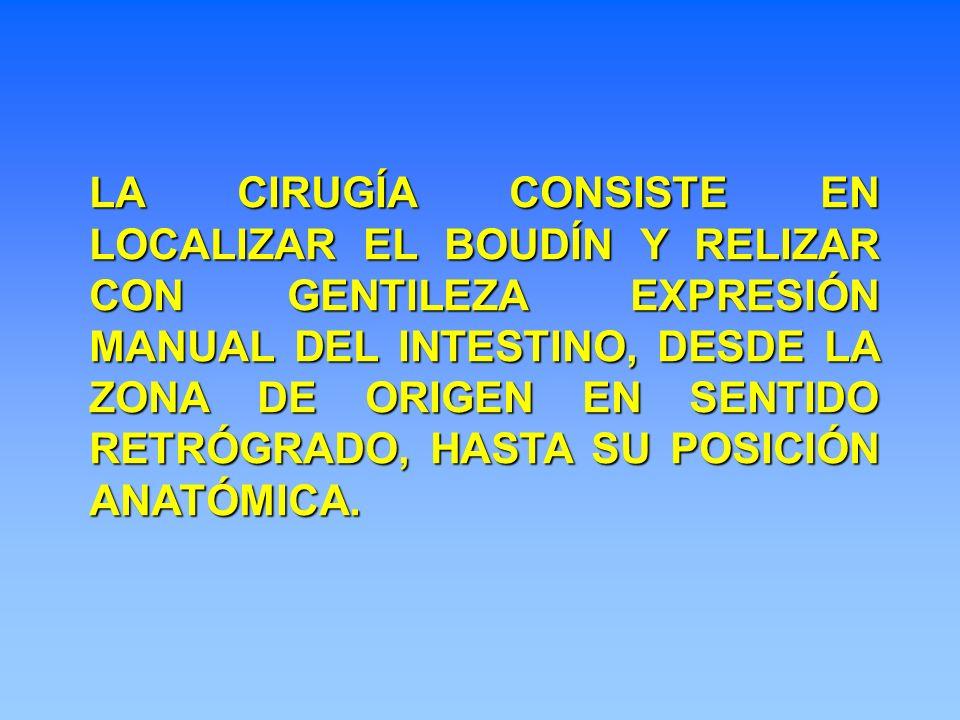 LA CIRUGÍA CONSISTE EN LOCALIZAR EL BOUDÍN Y RELIZAR CON GENTILEZA EXPRESIÓN MANUAL DEL INTESTINO, DESDE LA ZONA DE ORIGEN EN SENTIDO RETRÓGRADO, HAST