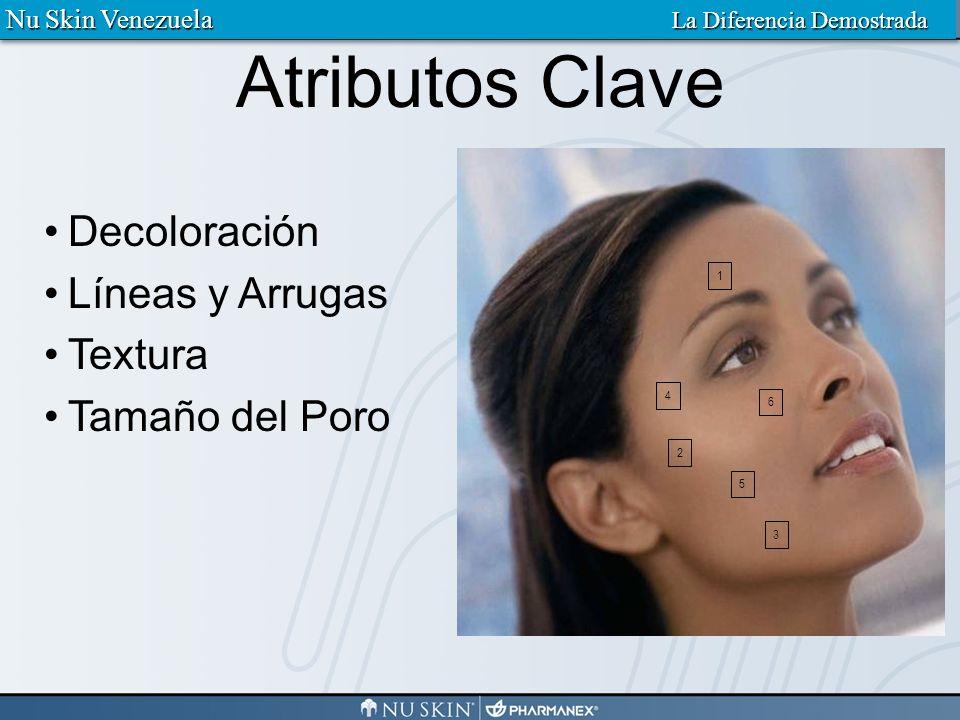 Imágenes de la piel del cliente Información del Distribuidor Información del Cliente Notas Reporte Nu Skin Venezuela La Diferencia Demostrada