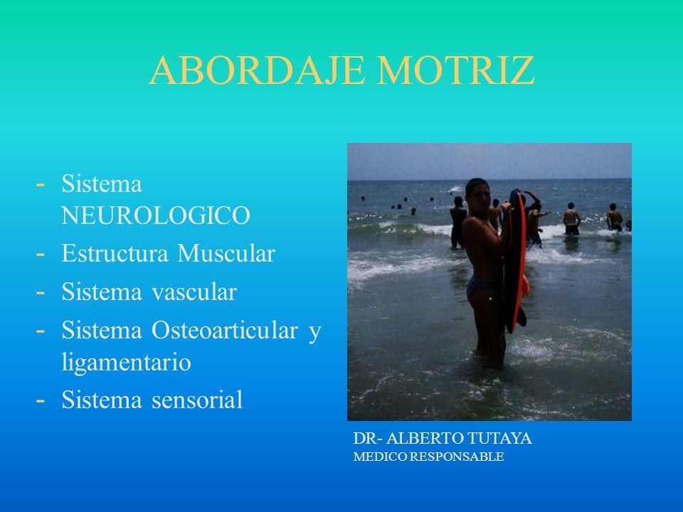 ABORDAJE MOTRIZ - Sistema NEUROLOGICO - Estructura Muscular - Sistema vascular - Sistema Osteoarticular y ligamentario - Sistema sensorial DR- ALBERTO