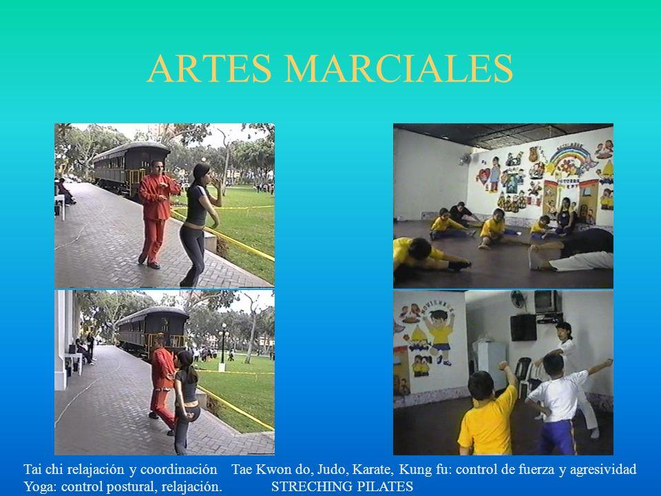 ARTES MARCIALES Tai chi relajación y coordinación Tae Kwon do, Judo, Karate, Kung fu: control de fuerza y agresividad Yoga: control postural, relajaci