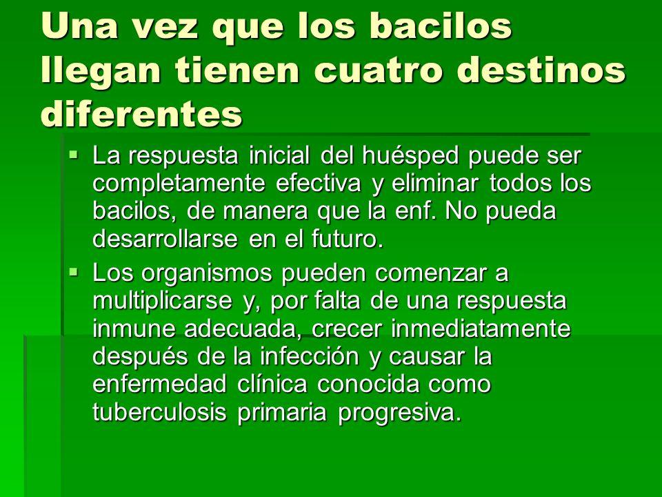 PACIENTES CON CRITERIO DE INGRESO: PACIENTES CON CRITERIO DE INGRESO: De bajo nivel educacional, de escasos recursos caso social.