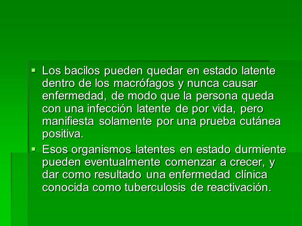 Prevención La vacunación con BCG al nacimiento La vacunación con BCG al nacimiento la quimioprofiláxis, van dirigidas a los tres eslabones de la cadena epidemiólogica, fuente de infección, mecanismo de transmisión y población suceptible.