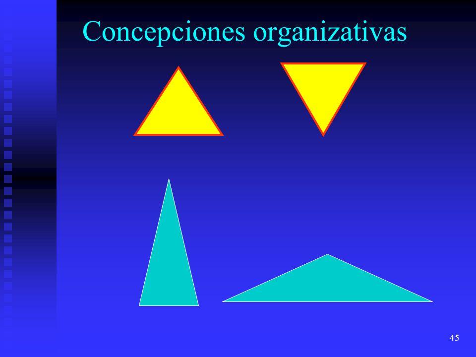 45 Concepciones organizativas