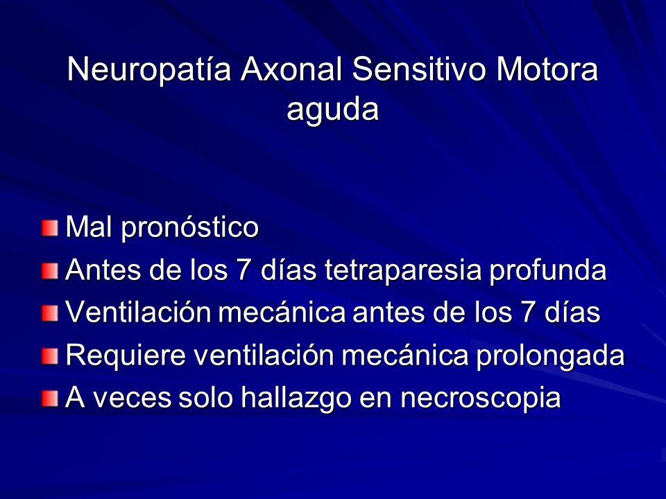 Neuropatía Axonal Sensitivo Motora aguda Mal pronóstico Antes de los 7 días tetraparesia profunda Ventilación mecánica antes de los 7 días Requiere ve