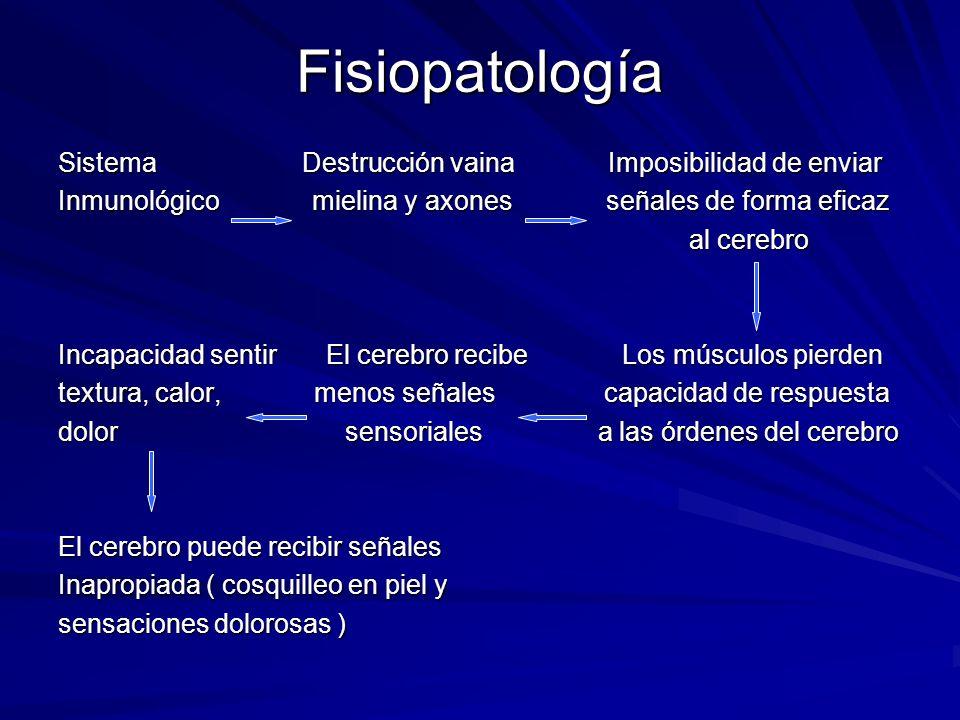 Fisiopatología Sistema Destrucción vaina Imposibilidad de enviar Inmunológico mielina y axones señales de forma eficaz al cerebro al cerebro Incapacid