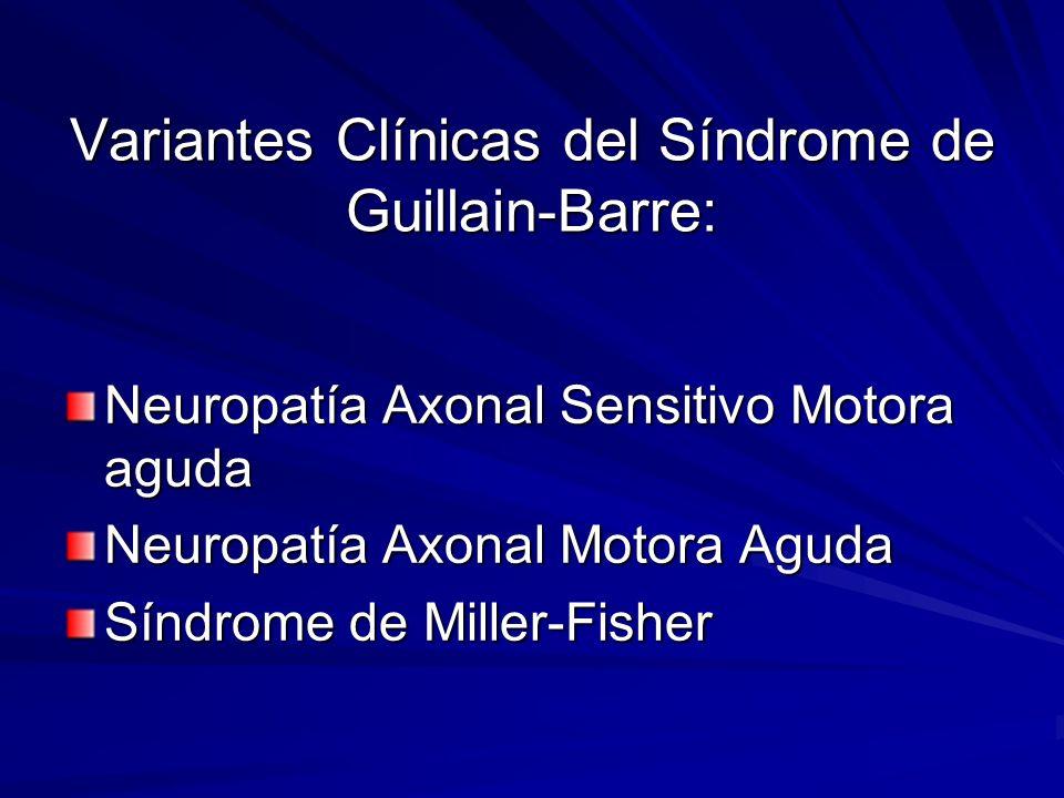 Variantes Clínicas del Síndrome de Guillain-Barre: Neuropatía Axonal Sensitivo Motora aguda Neuropatía Axonal Motora Aguda Síndrome de Miller-Fisher