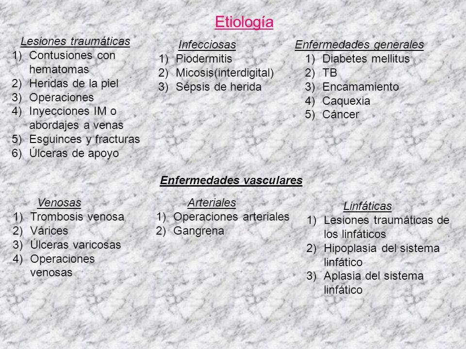 Síntomas Prodrómicos 1)Náuseas y vómitos 2)Astenia y anorexia 3)Cefalea 4)Vértigos Locales 1)Tumefacción de la zona 2)Calor, rubor, edema y dolor de la zona 3)Puede verse la puerta de entrada 4)Flictenas con contenido seroso (flictenular) 5)Necrosis de la piel (necrosante o gangrenante) Generales 1)Fiebre, toma del estado general 2)Taquicardia 3)Cefalea 4)Náuseas y vómitos