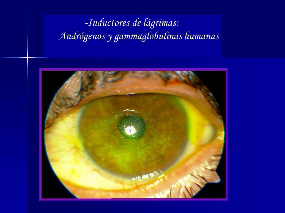 -Inductores de lágrimas: Andrógenos y gammaglobulinas humanas