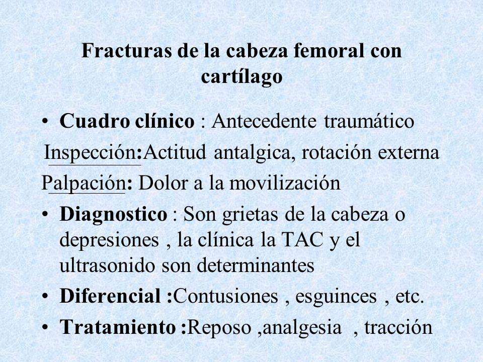 Clasificación anatómica de las fracturas de la Cadera : De la cabeza cubierta de cartílago Subcapitales transcervicales Basicervicales Trocánter mayor