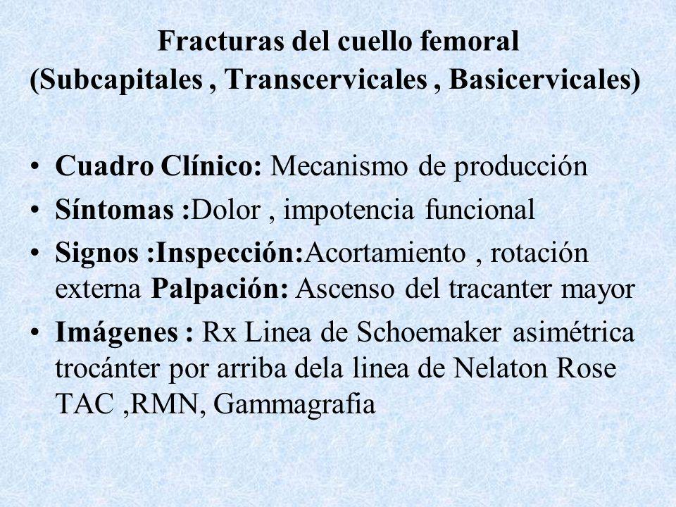Fracturas de la cabeza femoral con cartílago Cuadro clínico : Antecedente traumático Inspección:Actitud antalgica, rotación externa Palpación: Dolor a