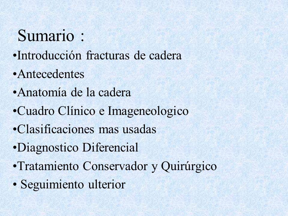 Sumario : Introducción fracturas de cadera Antecedentes Anatomía de la cadera Cuadro Clínico e Imageneologico Clasificaciones mas usadas Diagnostico Diferencial Tratamiento Conservador y Quirúrgico Seguimiento ulterior