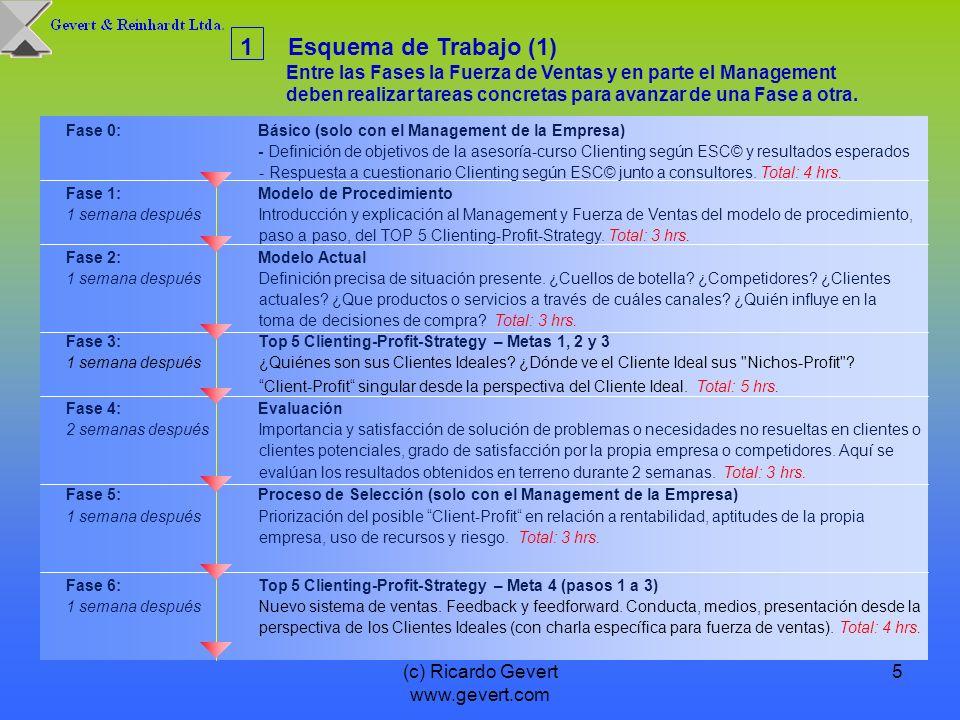 (c) Ricardo Gevert www.gevert.com 5 1Esquema de Trabajo (1) Entre las Fases la Fuerza de Ventas y en parte el Management deben realizar tareas concret
