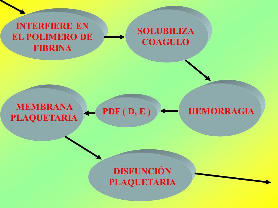 INTERFIERE EN EL POLIMERO DE FIBRINA SOLUBILIZA COAGULO HEMORRAGIA PDF ( D, E ) MEMBRANA PLAQUETARIA DISFUNCIÓN PLAQUETARIA