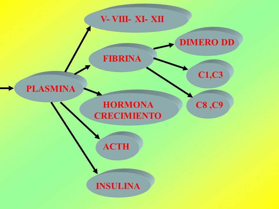 PLASMINA V- VIII- XI- XII FIBRINA DIMERO DD C1,C3 C8,C9 HORMONA CRECIMIENTO ACTH INSULINA